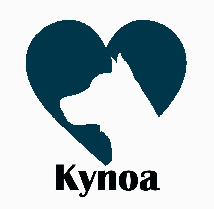 logo-kynoa