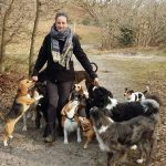 Honden uitlaatservice Bink en Bella